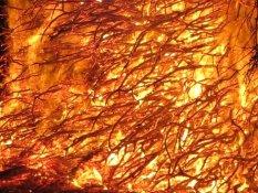 2013 03 31 fire 083